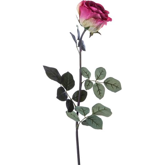 Picture of ROSE stem h70cm pink