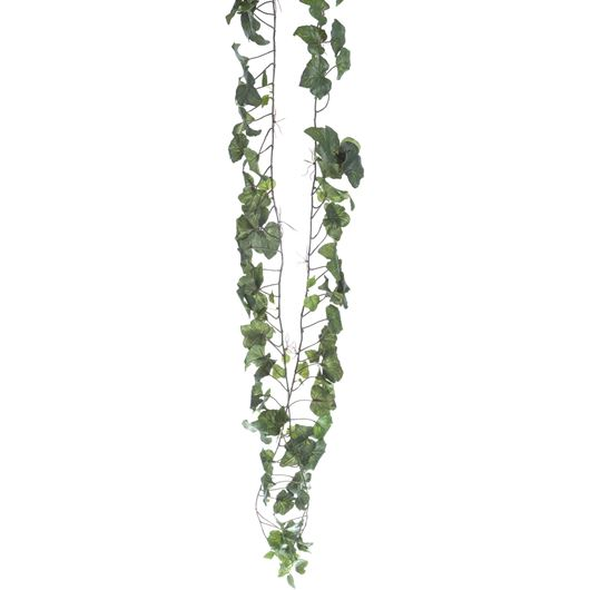 Picture of HEDERA stem h180cm green