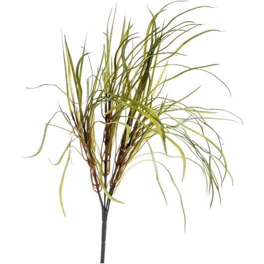 Picture of GRASS stem h38cm green