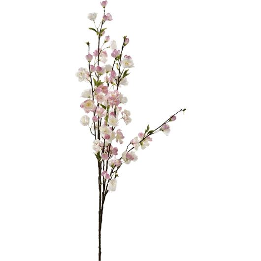 Picture of CHERRY BLOSSOM stem h137cm pink