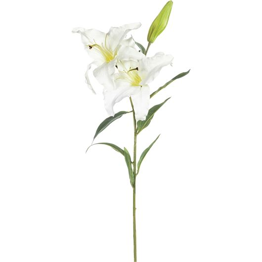 Picture of LILY stem h94cm white