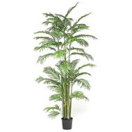 ARECA_PALM_tree_h260cm_green