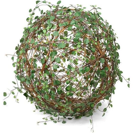 Picture of MUEHLENBECKIA ball d40cm green