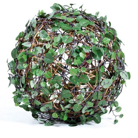 Picture of MUEHLENBECKIA ball d20cm green