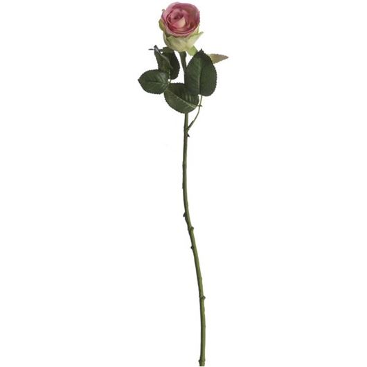 Picture of ROSE stem h65cm cream/pink