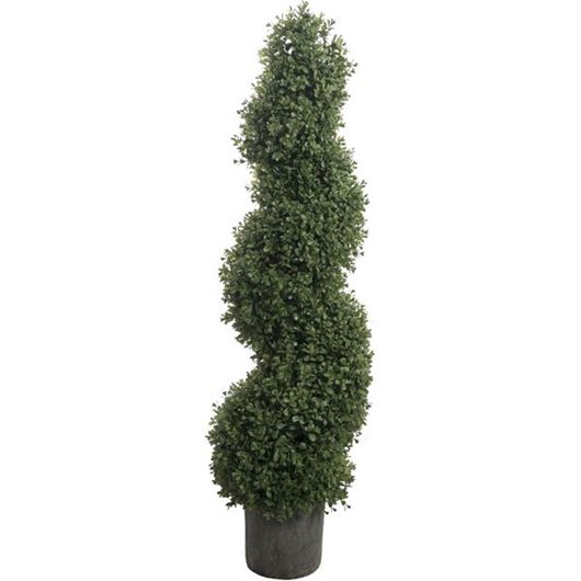 Picture of BOXWOOD spiral tree h135cm green