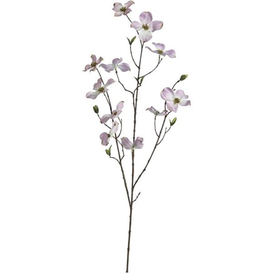 Picture of DOGWOOD stem h100cm pink