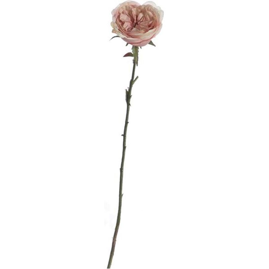 Picture of ENGLISH rose stem h51cm pink