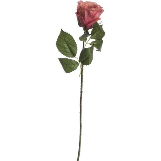 Picture of ROSE stem h56cm pink