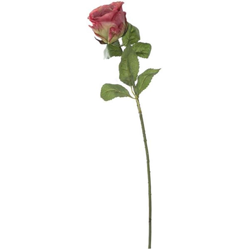 Picture of ROSE stem h56cm pink/green