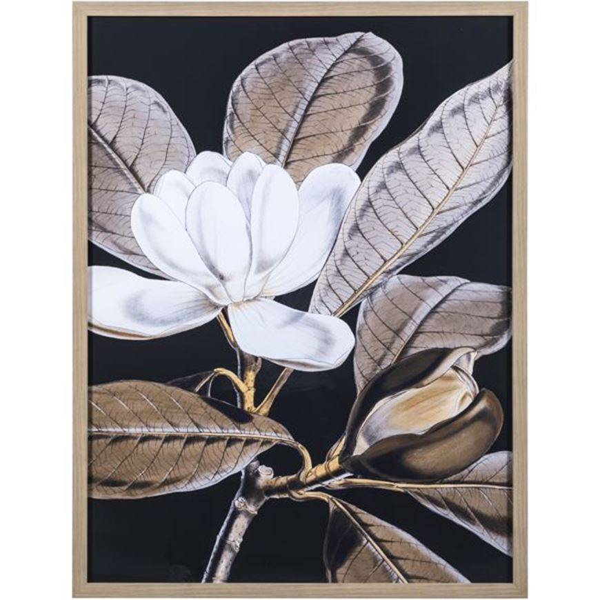 Picture of BLOOMS II print 79x104 brown