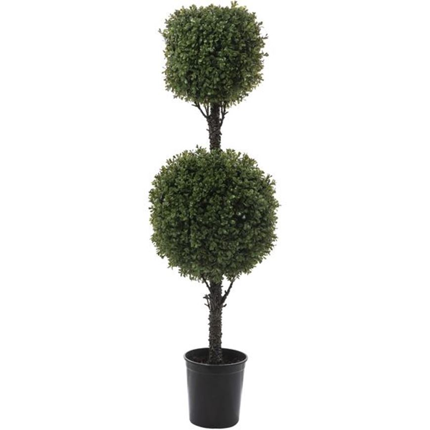Picture of BOXWOOD tree h120cm green
