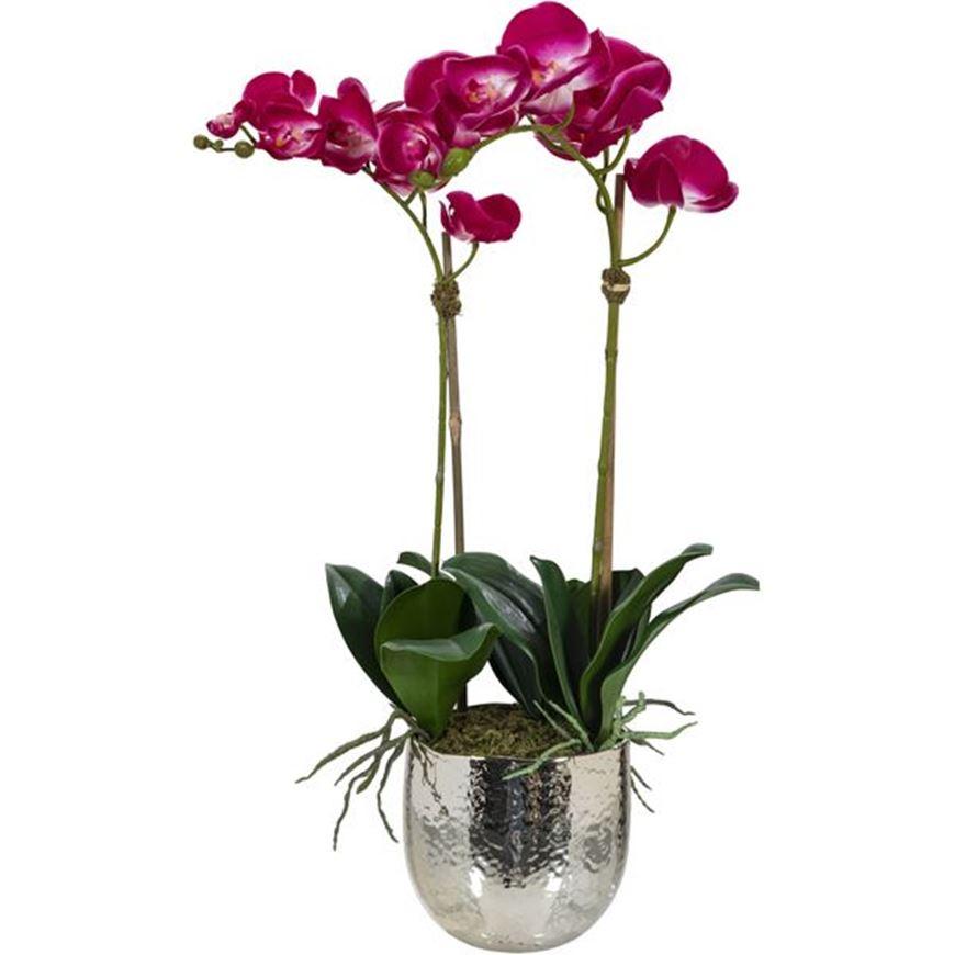 Picture of ORCHID pot h70cm purple/silver