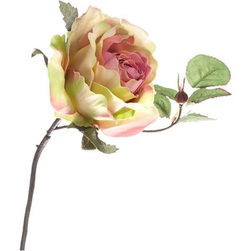 ROSE stem h24cm pink/cream