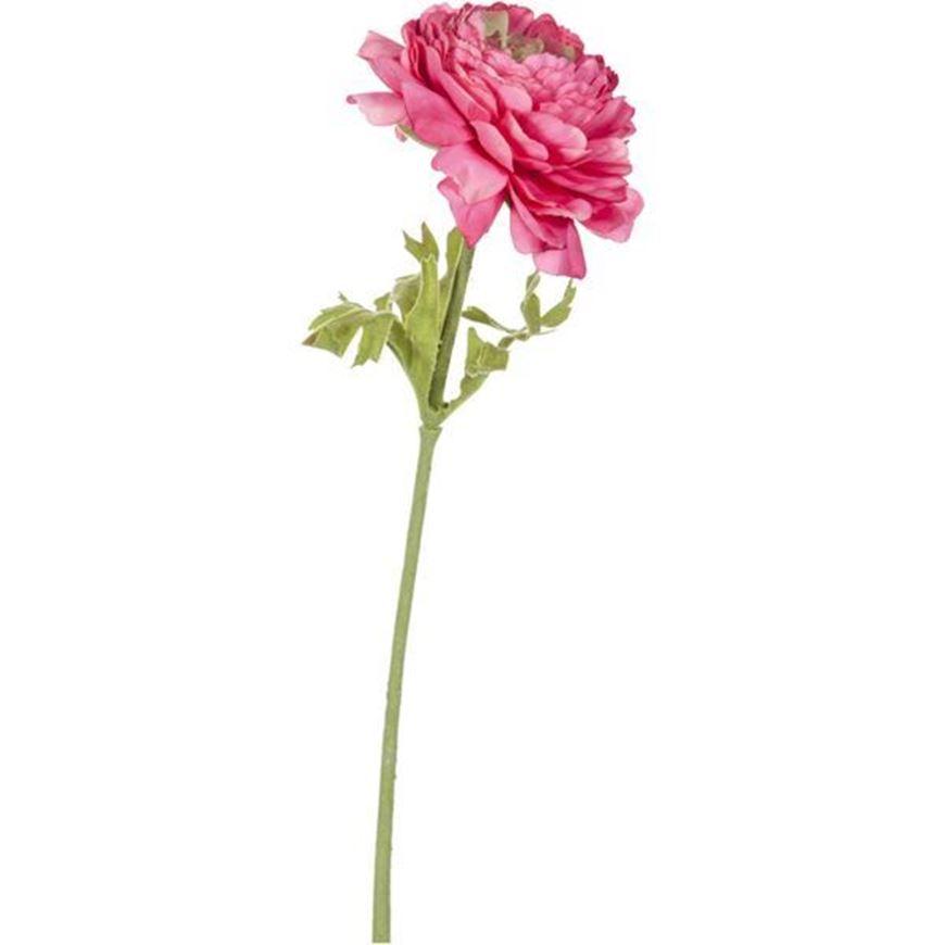 RANUNCULUS stem h36cm pink