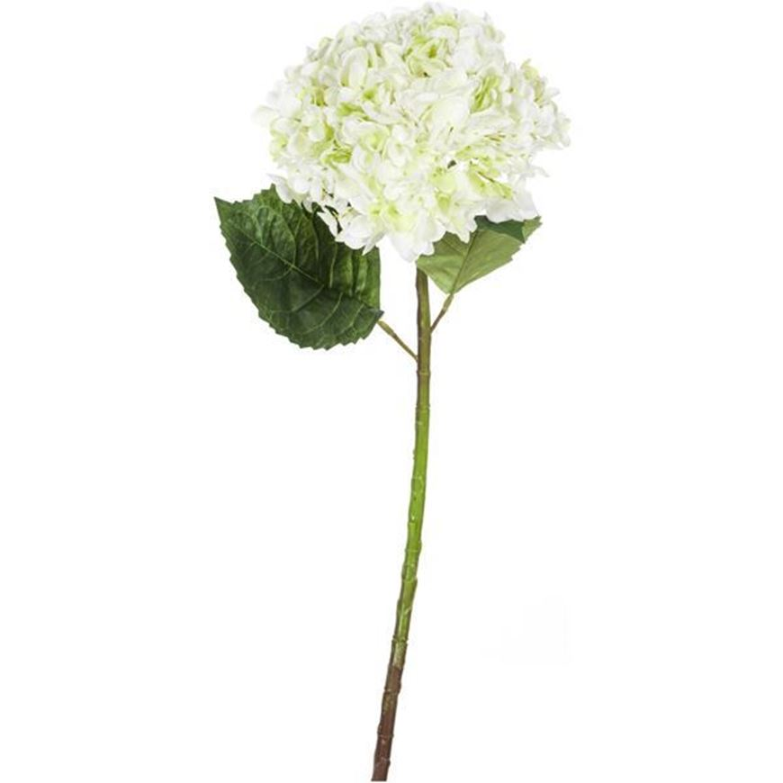 HYDRANGEA stem h53cm white