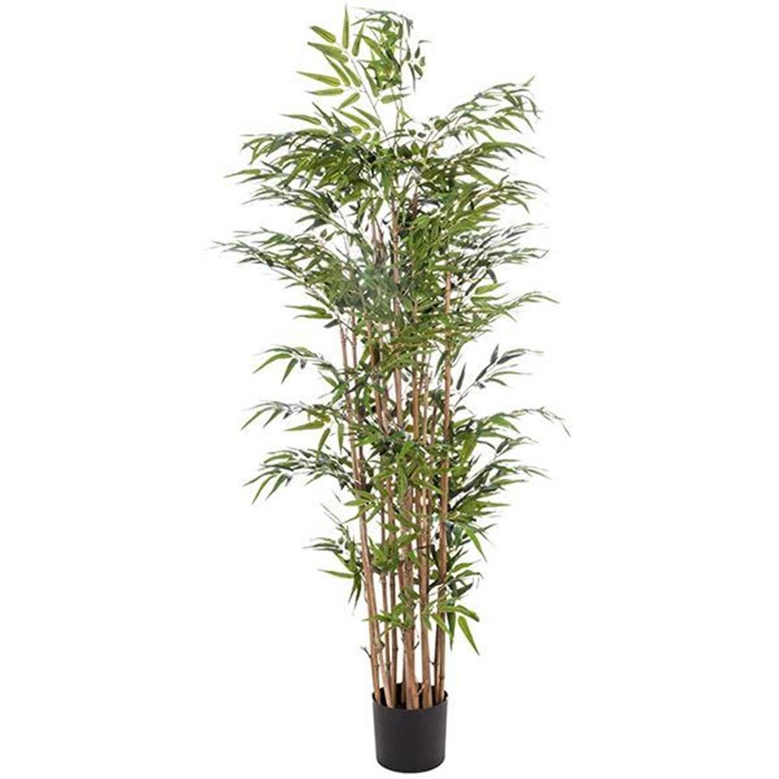 BAMBOO tree h180cm green