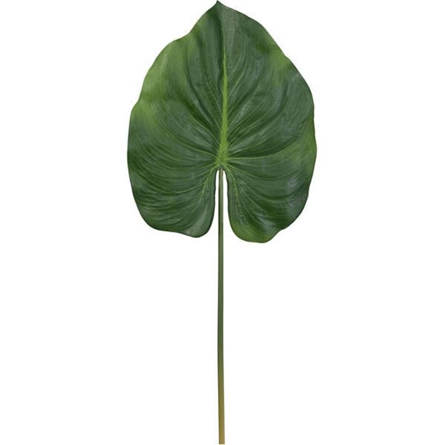 CANNA leaf h82cm green
